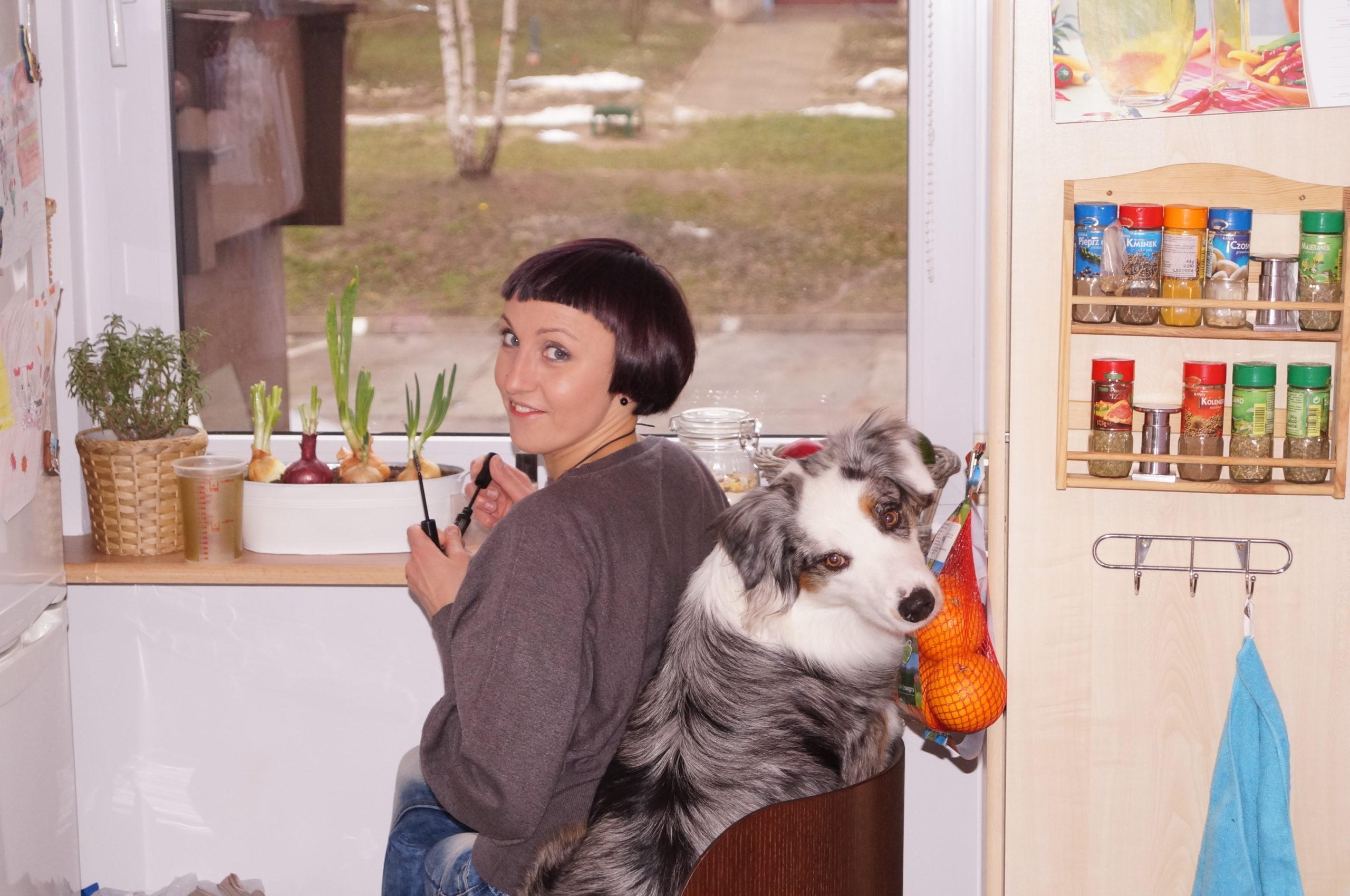 Jak zacząć edukację psa?